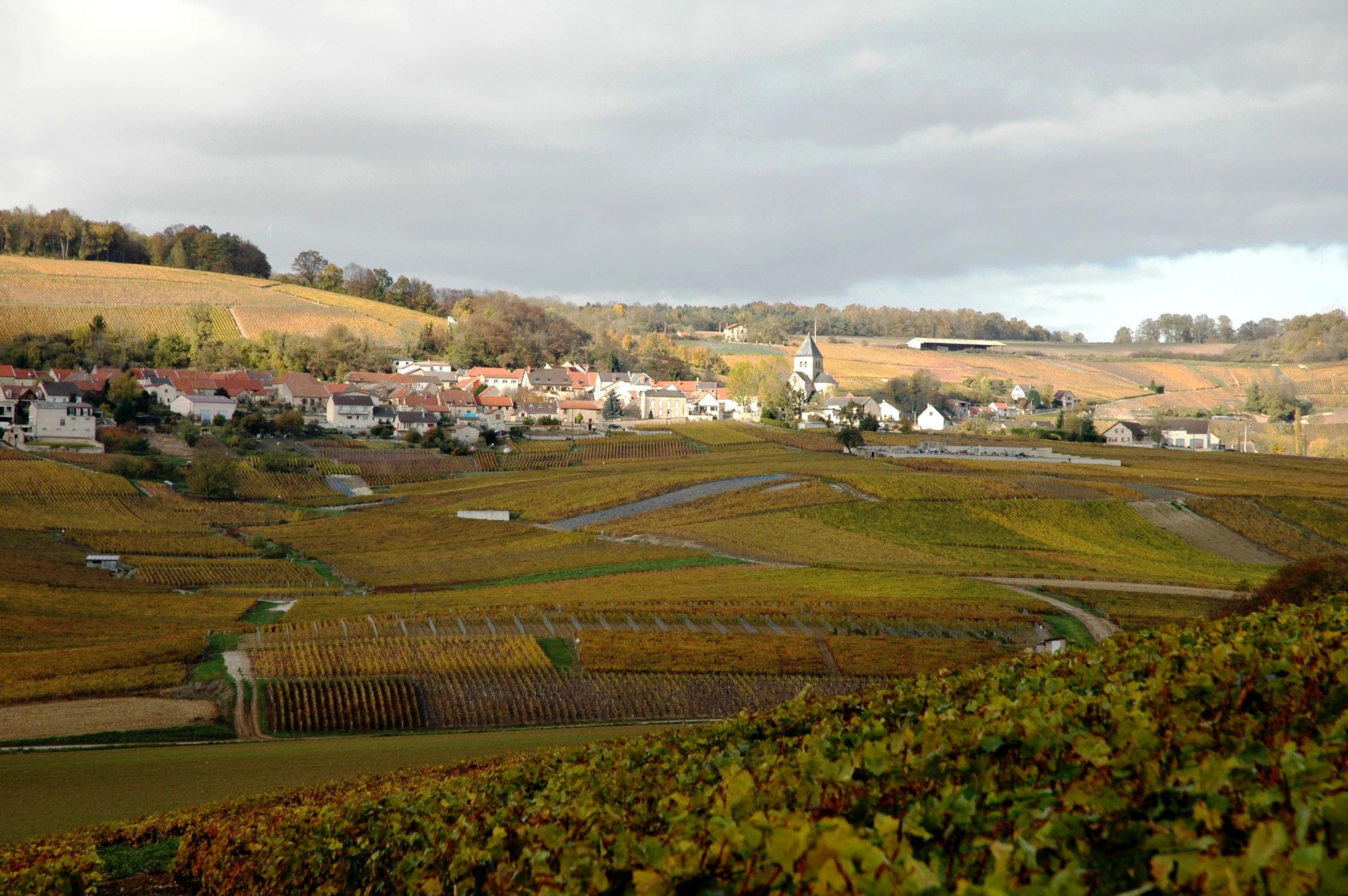 Fleury-la-Rivière Marne 51