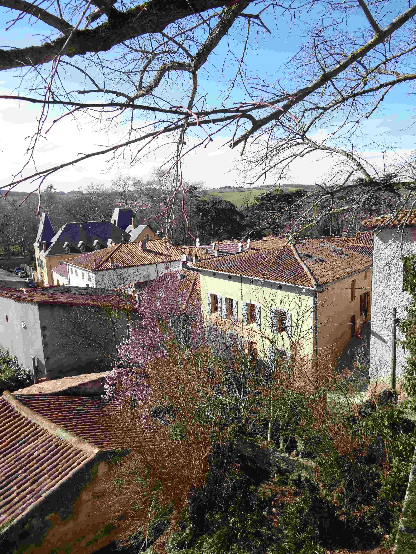 Saint-Michel-de-Lanès