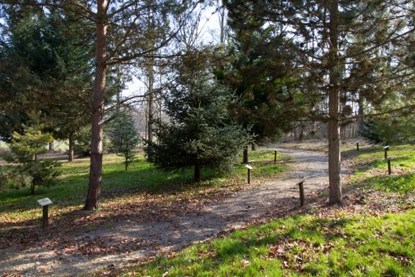 arboretum-photo-jj-perrot-systeme-noir