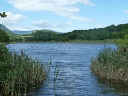 lac-arboreaz