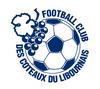 logo-football