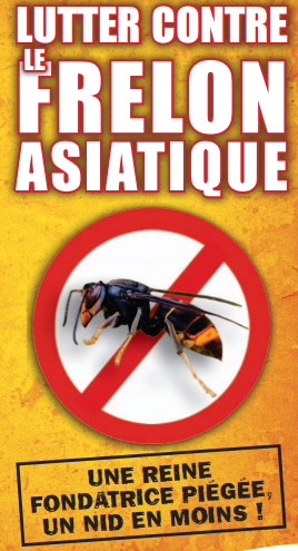 affiche-lutte-contre-le-frelon-asiatique