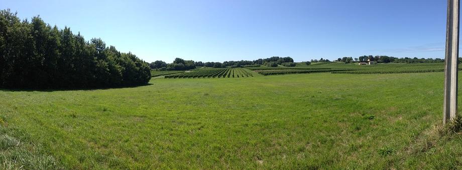 Vérac - Gironde