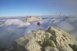 le-mont-aiguille-et-la-mer-de-nuages
