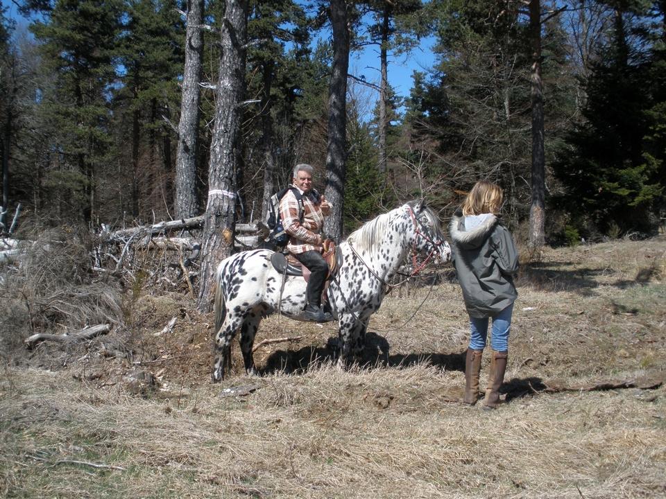 balade-equestre