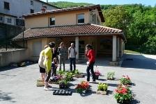 vente-de-fleurs