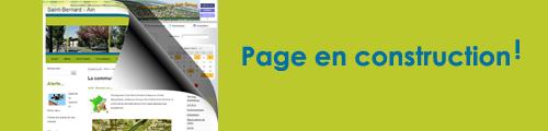 pagetrx500-jpg
