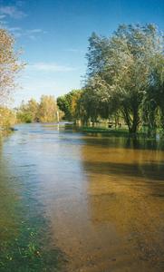le-chemin-de-halage-submerge