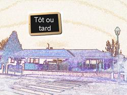totoutard250-jpg