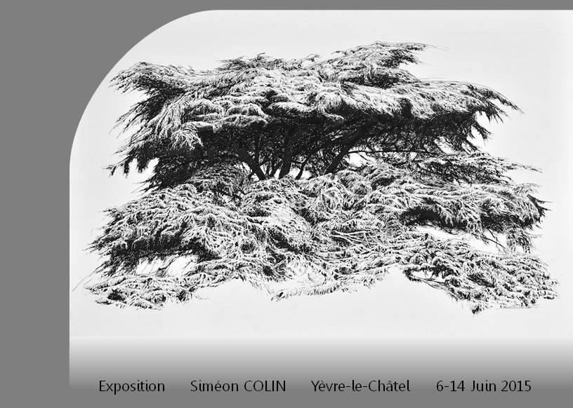 exposition-simeon-colin
