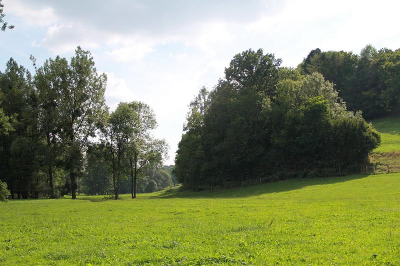 vallee-brenon-ete-2