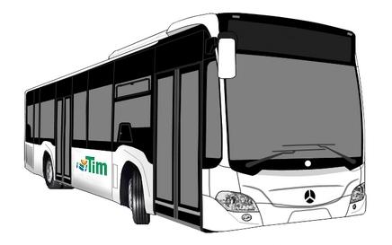 bus-tim-1