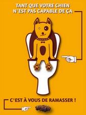 halte-aux-dejections-canines-1