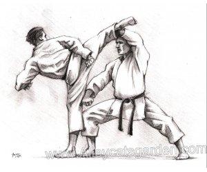 self-defense-adultes