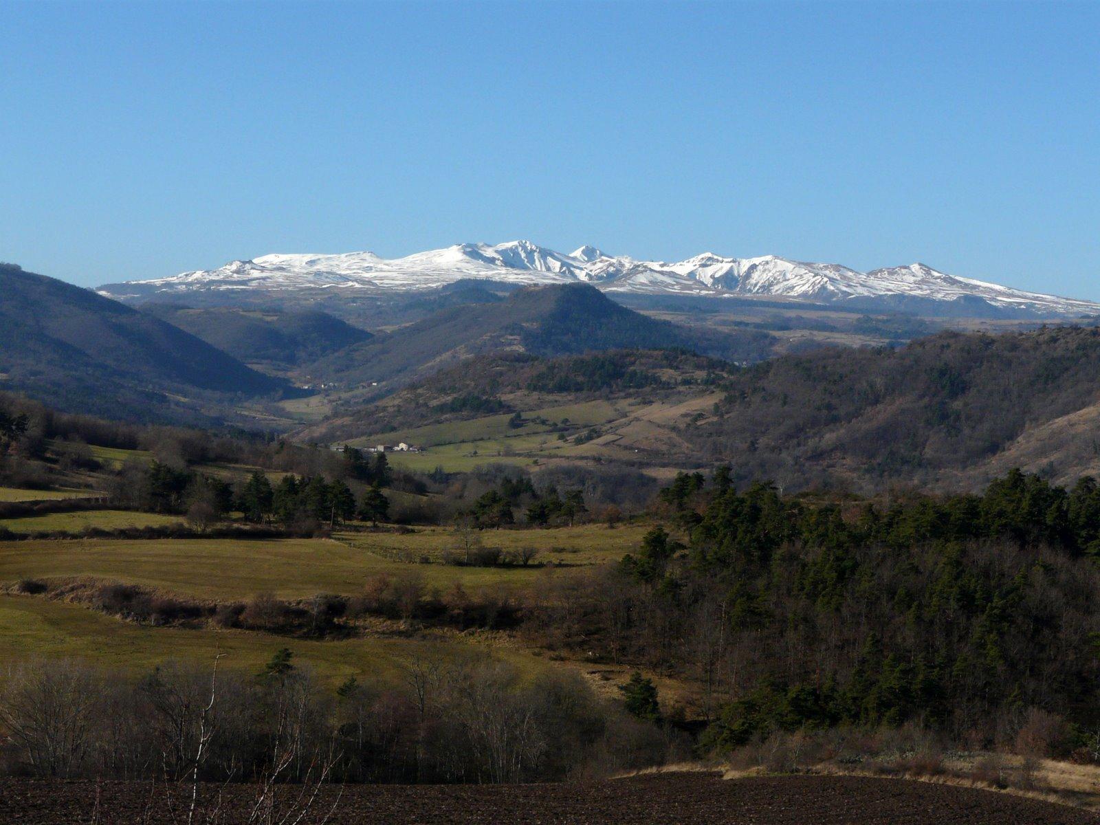 vue-dorphanges