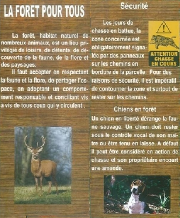 foret12