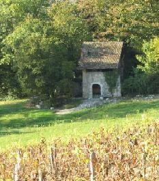 cellier-dans-les-vignes-de-la-commune-de-motz