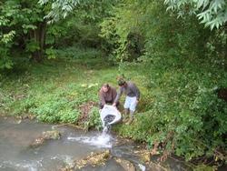 lacher-de-poissons-11-10-2012