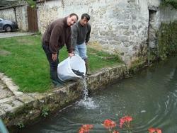 lacher-de-poissons-1-11-10-2012
