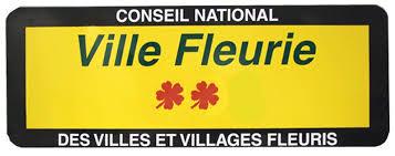 jouy-mauvoisin-2-fleurs
