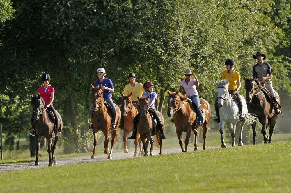 centre-equestre-poney-club