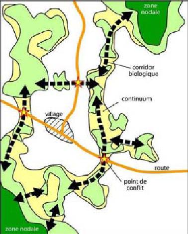 schema-trame-ecologique