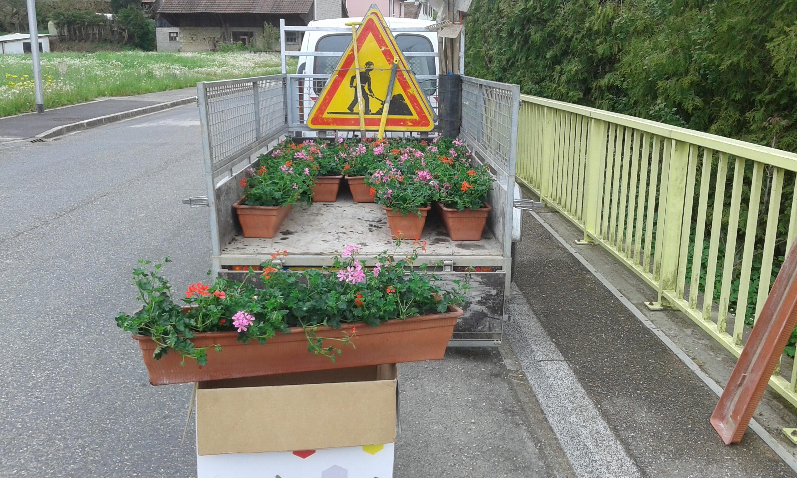 fleurs-2016