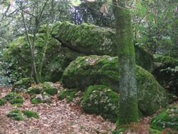 rochers-dorques