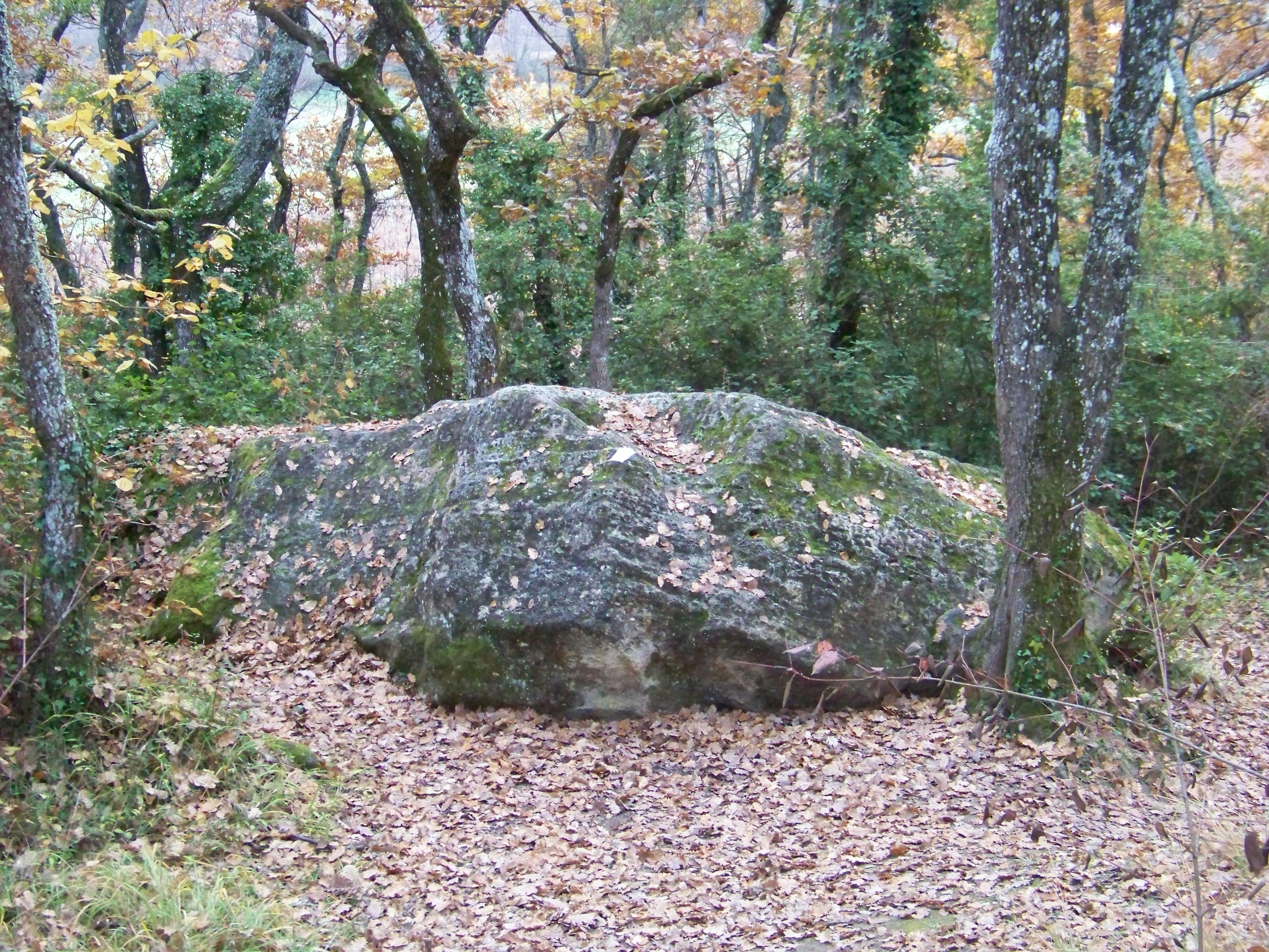 pierre-jpeg