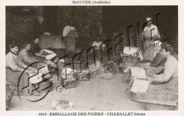 emballage-de-poires-en-1910